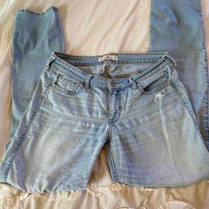 Hollister 11 regular size jeans